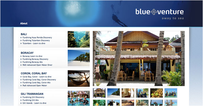 REWORKS website for Blue Venture 2010