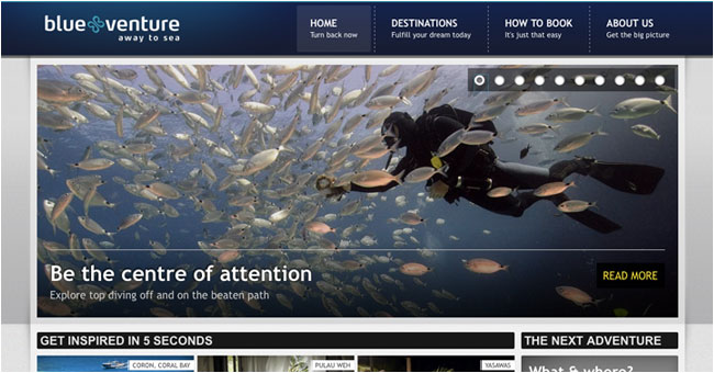 REWORKS website for Blue Venture 2011